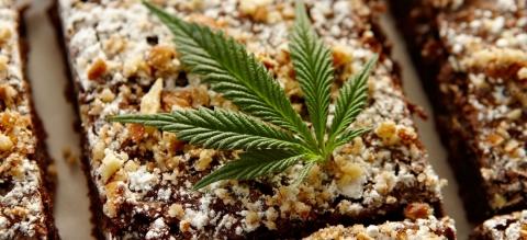 Gourmet Cannabis Edibles